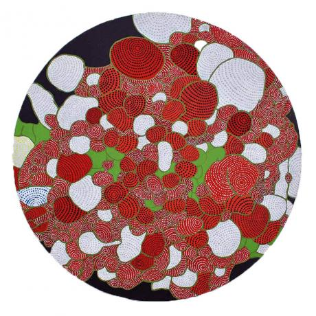 Asuka Nirasawa, Cell 1, 2013, Acrylic on round canvas, 50,2cm x 50,2cm x 1,3cm