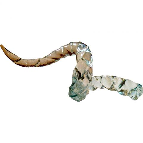 Liz Lacey Entwined Horns